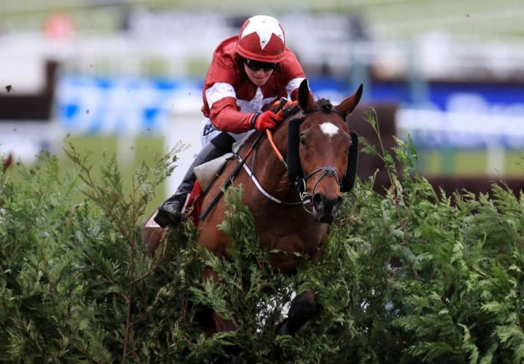 Tiger Roll wins the Grand national