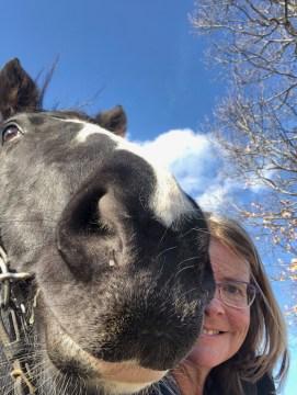 Horse selfie