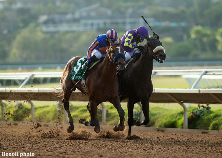 Maximum Security wins San Diego Handicap by a nose