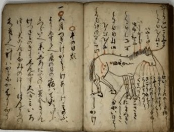 Ancient Japanese book on horse care