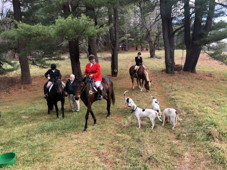 A fun Day foxhunting