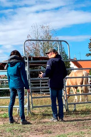 equicoaching seances individuelles avec le cheval
