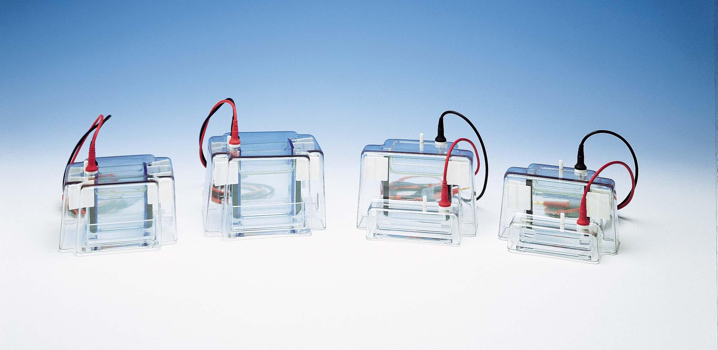 Sistema de Electroforesis Vertical Image
