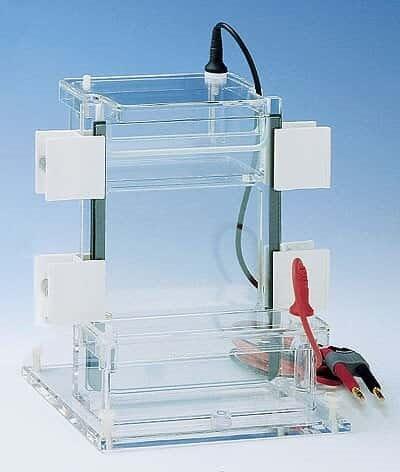 Sistemas de Electroforesis Image