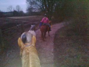 Benefits of hacking and leading horses