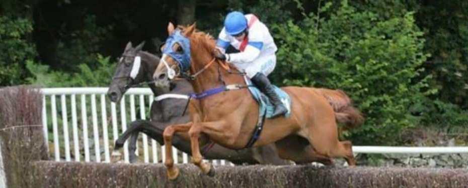 scottie racing