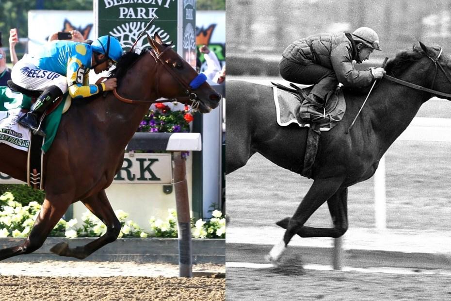 race horses