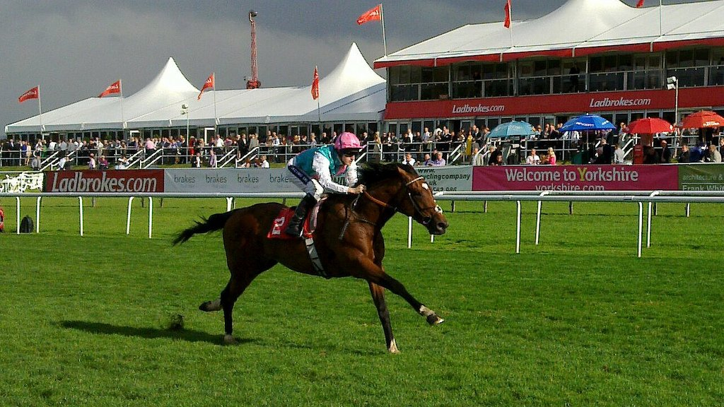 frankel_the_horse_winning_at_doncaster_2010