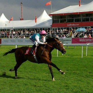 Credit RacingKel via https://commons.wikimedia.org/wiki/File:Frankel_the_horse_winning_at_Doncaster_(2010).jpg