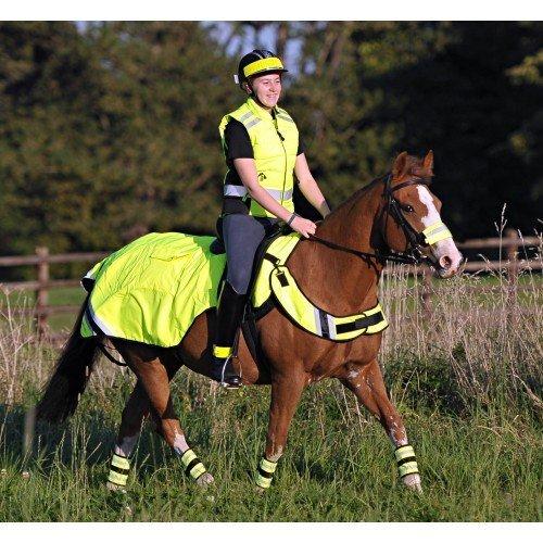 horse in hi vis