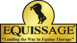 logo-equissage_gold2x