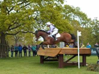 ex racehorse at badminton, Arctic Soul