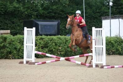 scottie jumping