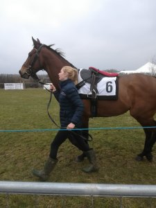 point to point racing horse owners