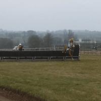 Horses jumping point to pointing before Cheltenham festival female jockeys