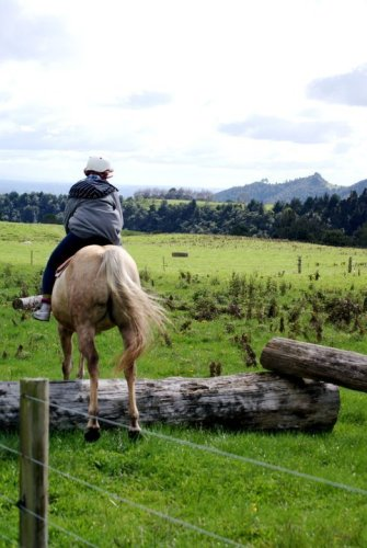 riding in new zealand