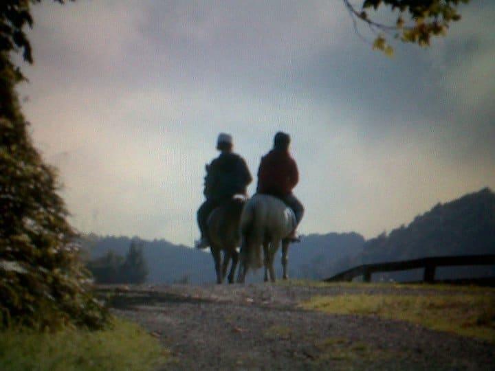 new zealand riding
