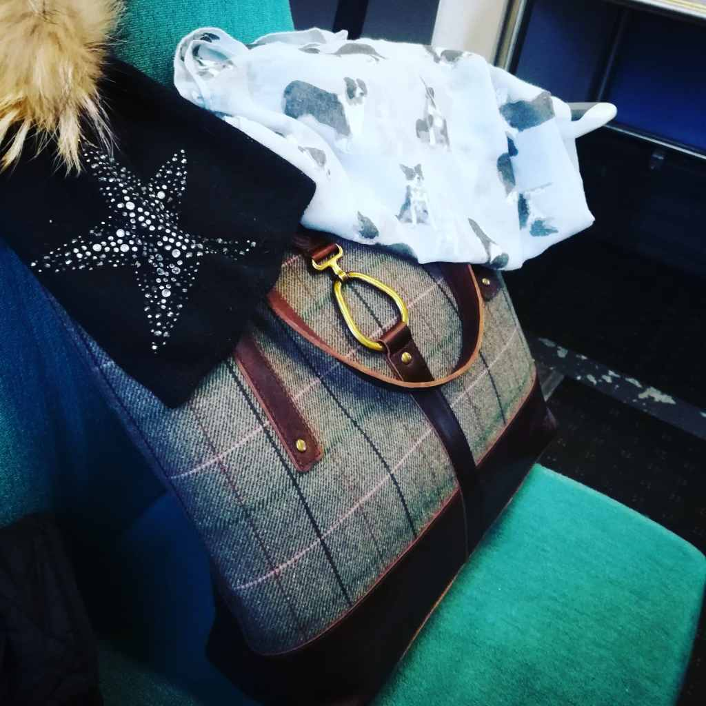 tote bag on the train