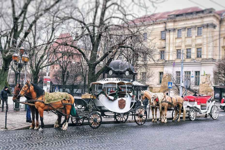 brown horses with carriage near building, history of horses
