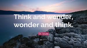 Think and wonder, wonder and think.