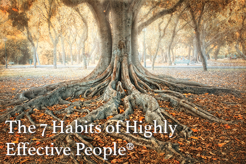 The 7 Habits of Highly Effective People® Series