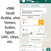 EveryStudent.com + Whatsapp = A Multiplying Disciple in the Middle East