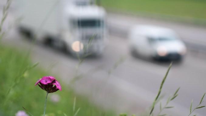 consumo auto diesel: consumare pocofa bene al portafoglio e anche all'ambiente