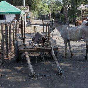 Nicaragua - 32 of 256
