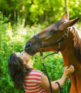 Retrouvez l'harmonie avec les chevaux