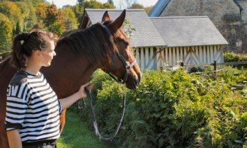 Etablir une nouvelle relation avec votre cheval