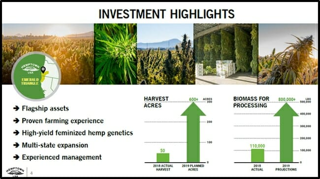 Hemptown USA raises $23 million and lays out plan for CBG global