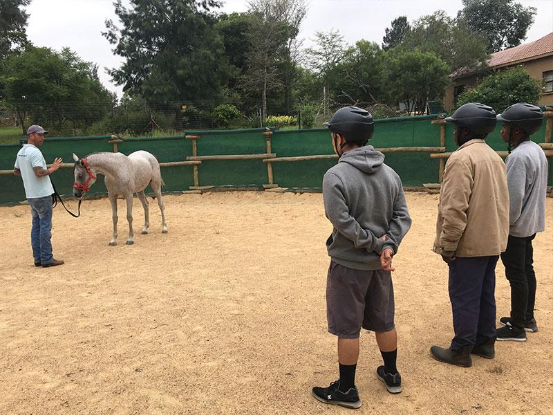 Monty Roberts Horsemanship 101