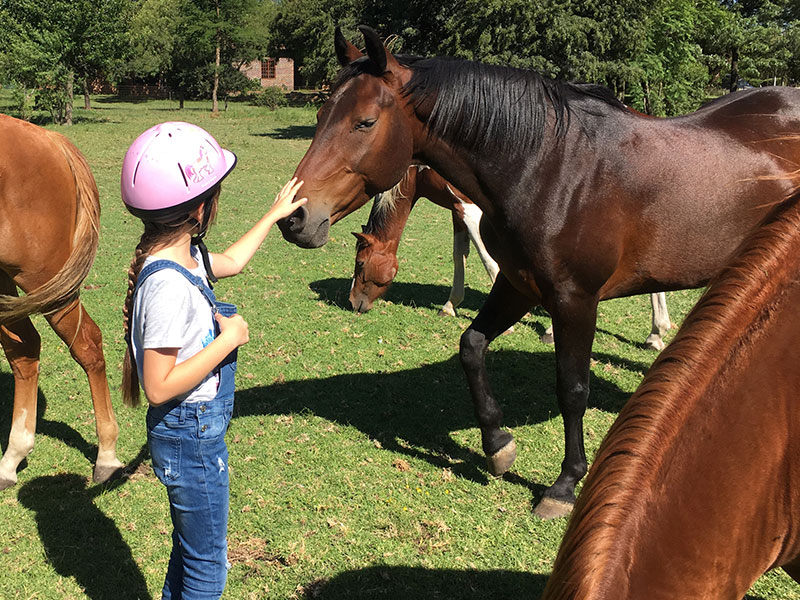 The therapeutic benefits of horses for kids