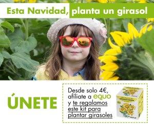 Planta un girasol