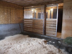 Stalls (14 x 14, fully rubber matted)