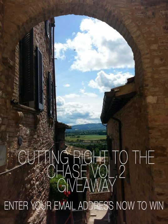 cutting right to the chase vol.2, free ebooks for kindle, cozy mystery, free mystery ebooks, free ebook, ebooks for free, free kindle ebooks, free stuff, book giveaway, book giveaway contest, detective short stories