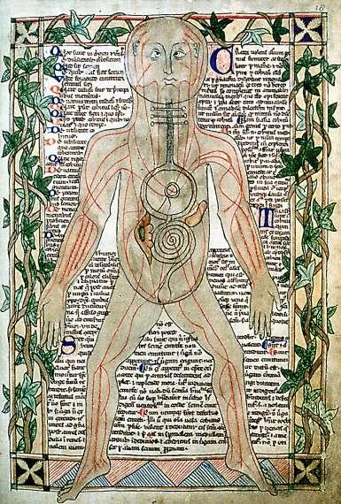 13ος αιώνας, εικόνα που δείχνει τις φλέβες και την κυκλοφορία του αίματος.