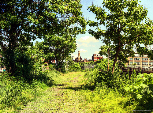 Panorama 1710_hdr_pregamma_1_mantiuk_contrast_mapping_0.1_saturation_factor_0.8_detail_factor_1 | Flickr - Photo Sharing!
