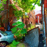 Panorama 1799_blended_fused | Clay Street Philadelphia, PA C… | Flickr