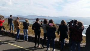 ring_of_kerry14