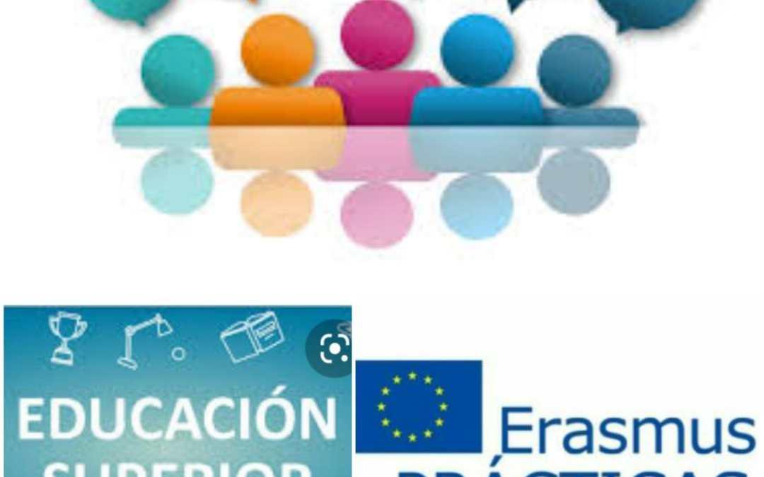 Penúltima reunión de seguimiento del alumnado en prácticas Erasmus+ KA103