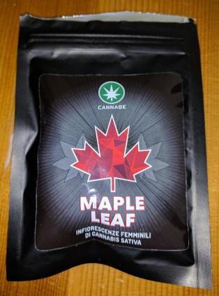 Maple Leaf cannabis light recensione Cannabe