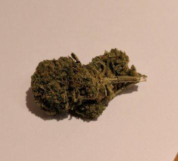 Fiore di Cheese, canapa legale di Sunny Weed