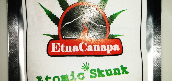 atomic skunk canapa legale