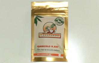Bustina canapa legale Gianicolo R.XIII di Canapando