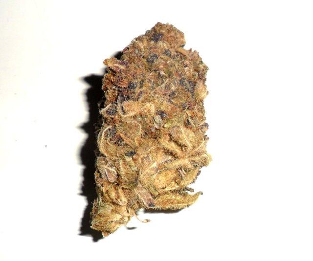 Infiorescenza femminile di canapa legale AK47 di M Weed