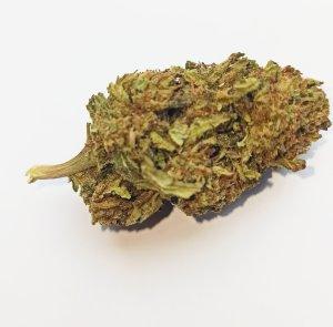 Cannabis light Momo Skunk