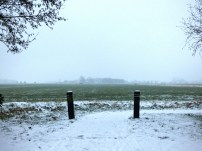 Winter 2017 - Sneeuw in Noordhorn (8)