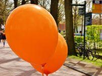 2017 - Oranjemarkt Zuidhorn 20