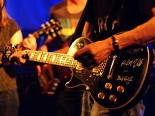 Neil Young Festical (44)